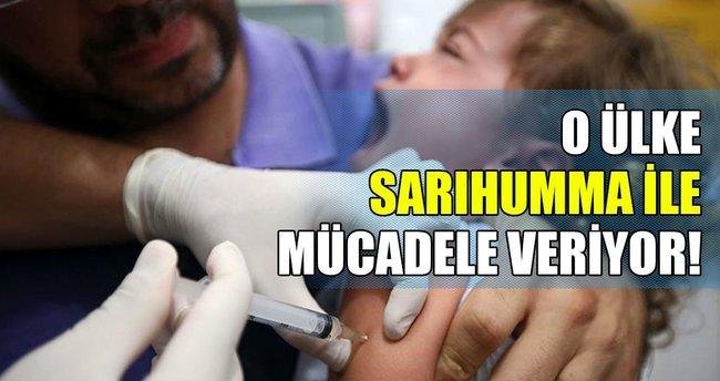 Brezilya'daki sarıhumma salgını yayılıyor