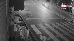 İstanbul Üsküdar'da sokak köpeklerinin 'kedi savaşı' kamerada | Video