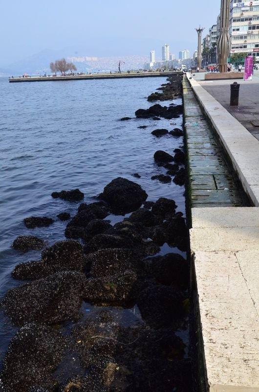 İzmir'de korkutan çekilme
