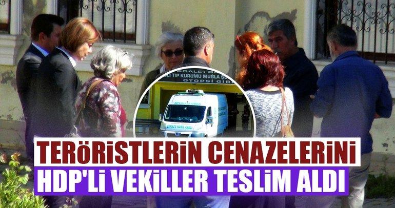 Muğla'da çatışmada öldürülen teröristlerin cenazelerini HDP'li vekiller aldı