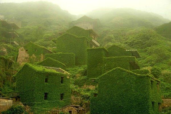 Terk edilmiş balıkçı köyünü tabiat ana ele geçirdi