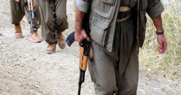 Son dakika: Hakkari'de 1'i kadın 2 PKK'lı öldürüldü