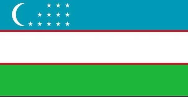 Geçmişten günümüze tüm Türk devletleri ve boyları! Hangi il hangi boydan geliyor?