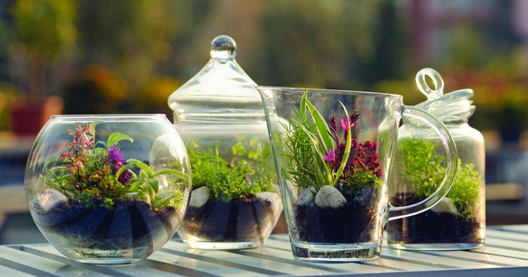 Çocuklar için cam bahçeler