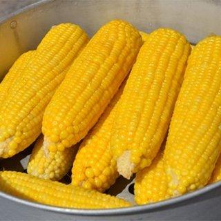 Süt mısırın faydaları ve zararları nelerdir?