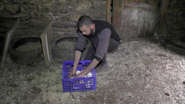 Evini satarak kaz çiftliği kurdu