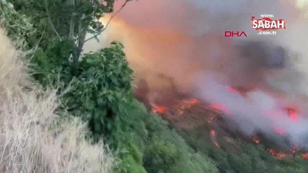 Son dakika   Bursa Kestel'de orman yangını   Video