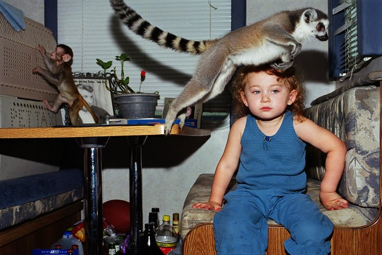 12 yıldır vahşi hayvanlarla yaşıyor