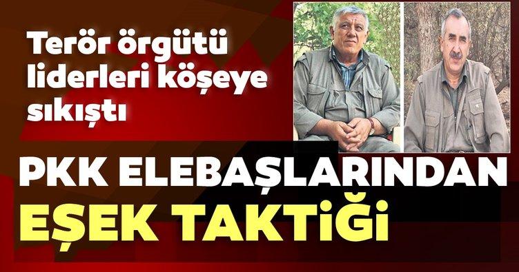 Son dakika: PKK'nın elebaşıları eşekle yer değiştiriyor