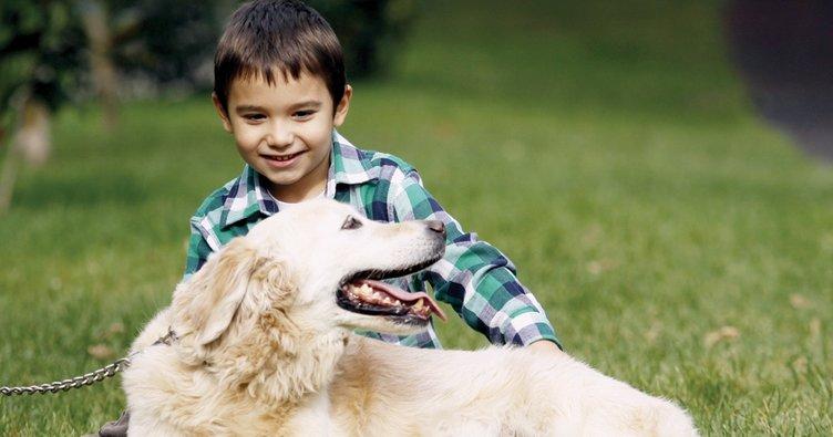 Çocuklu bir evde hayvan beslemek için olası riskleri azaltın!