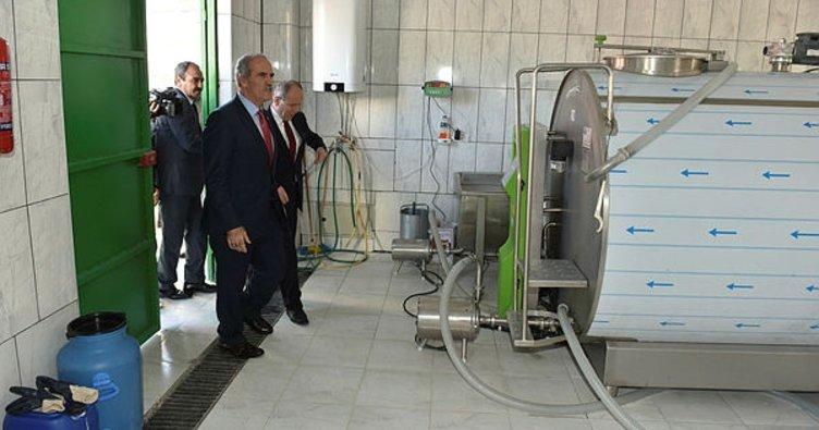 Büyükşehirden köylere süt toplama merkezi