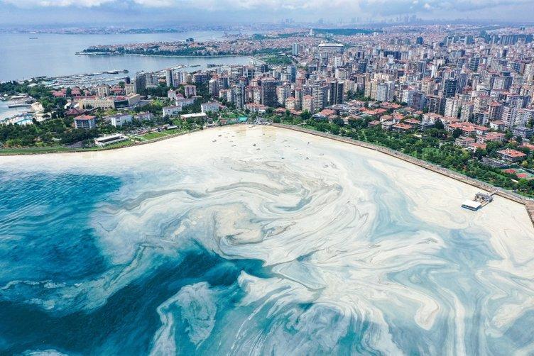 Müsilaj (Deniz salyası) kabusu! Bu görüntüler İstanbul'un göz bebeği Caddebostan'dan