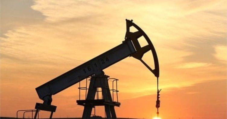 Ham petrol 8 ayın en düşük seviyesine geriledi