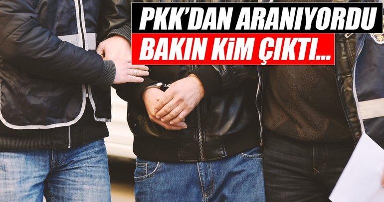 PKK operasyonunda yakalanan kişi bakın kim çıktı