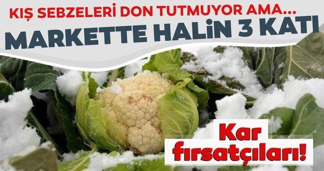 Kış sebzelerinde don fırsatçılığı