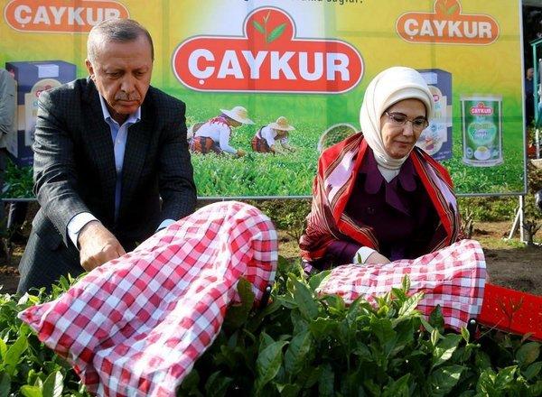 Cumhurbaşkanı Erdoğan'ın fotoğrafları albüm oldu