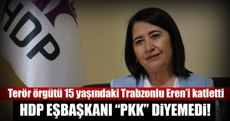 """HDP eşbaşkanı """"PKK"""" diyemedi!"""