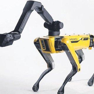 Kapı açan robot vitrine çıkıyor