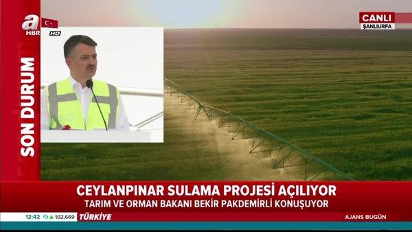 Bakan Pakdemirli Ceylanpınar Sulama Projesi'nin açılış töreninde konuştu | Video