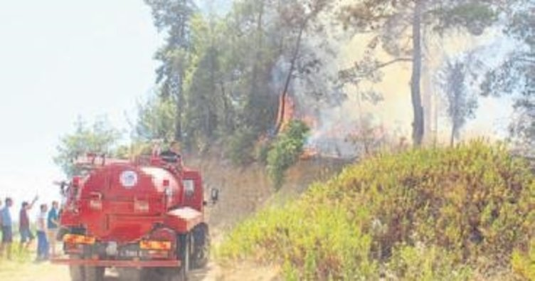 Orman yangınında bir hektar kül oldu