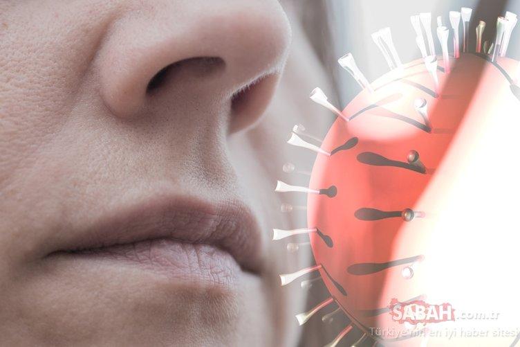 Bilimsel olarak tespit edildi! Koronavirüs beyinde kalıcı hasar bırakıyor