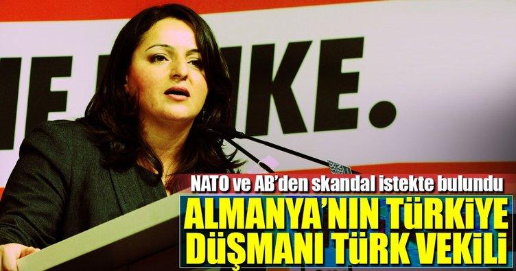 Almanya'nın Türkiye düşmanı Türk vekilinden skandal sözler