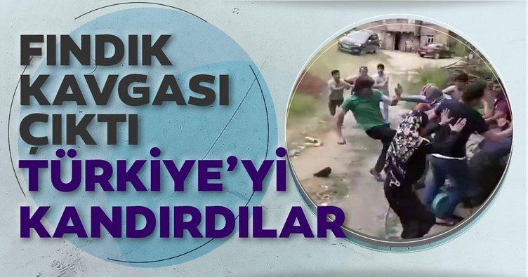 Fındık kavgası çıktı, Türkiye'yi böyle aldattılar