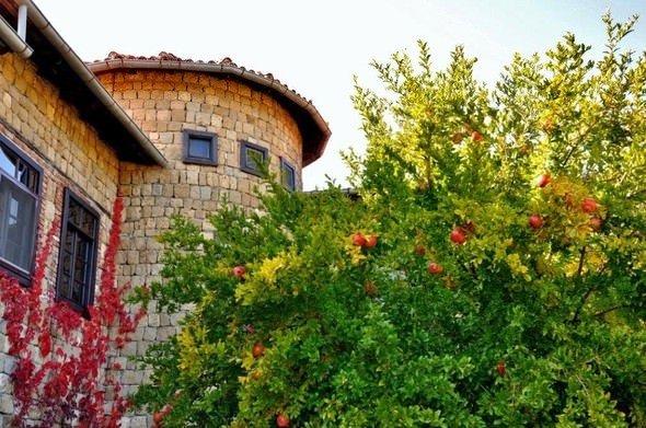 Kafayı dinlemek için en doğru adres: Yeşilyurt Köyü
