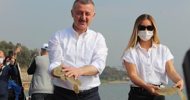 Büyükşehirden Körfeze 3 bin yavru balık! Büyükakın: Körfezimizi kirletenlere 35 milyon lira ceza yazdık