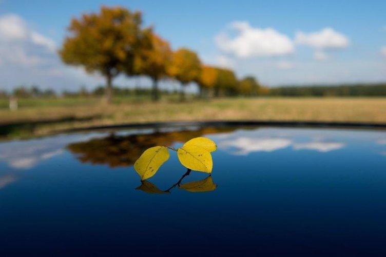 Büyüleyici sonbahar fotoğrafları