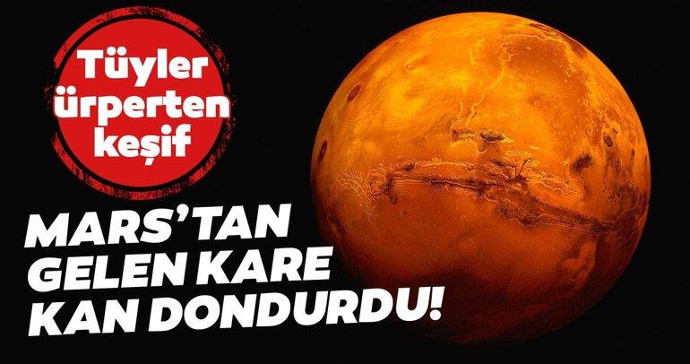 Mars'tan gelen kare kan dondurdu! Mars'ta yıkılmış bir tapınağın girişi bulundu!