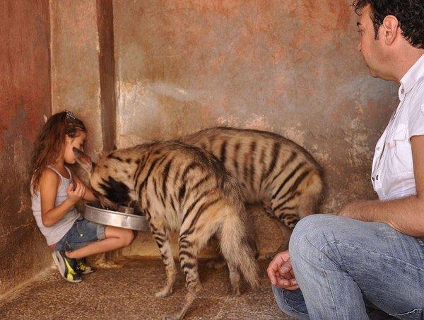 Hayvan sevgisi bazen cesaret ister