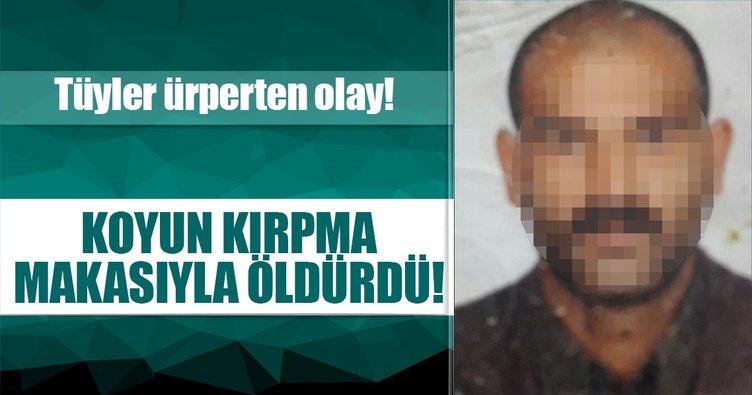 Aydın'da bir kişi ağabeyini koyun kırpma makasıyla öldürdü