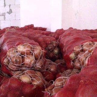 Soğanı depoya kilitlediler