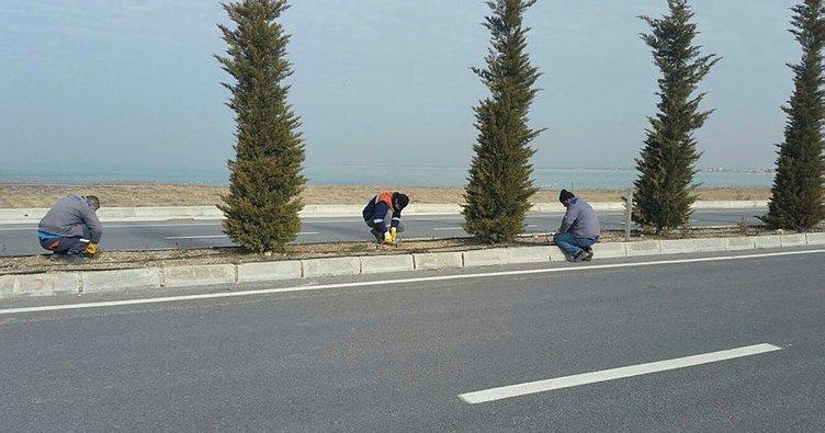 Beyşehir'in yeşil alanlarında otomatik sulama dönemi başlıyor
