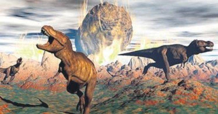 Dinozorları düşen göktaşı değil, soğuyan hava yok etti