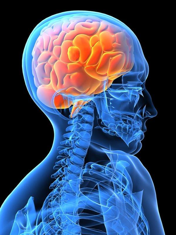 Beynimiz nasıl yaşlanıyor?