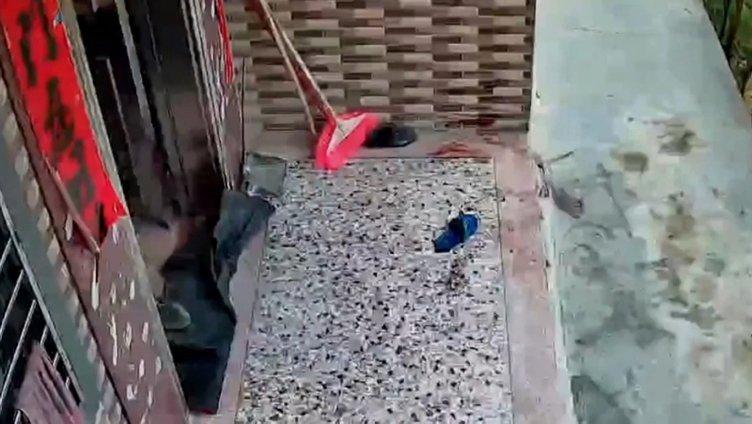Evinin önünde duran anne ve bebeğe bufalo saldırdı