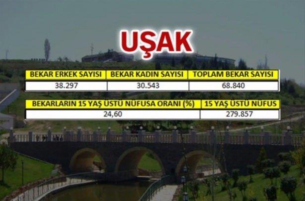 Türkiye'nin en bekar illeri