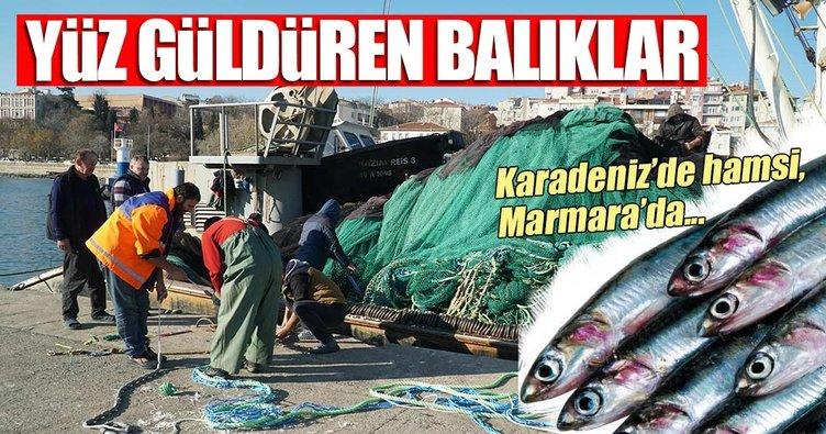 Karadeniz'de hamsi, Marmara'da istavrit yüz güldürüyor