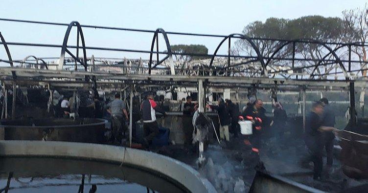 Balık çiftliği alev alev yandı