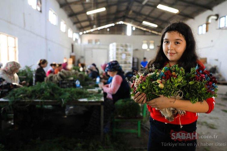 Antalya'da orman çöpleri, kadınların elinde değer kazandı! 20 ülkeye ihraç ediyorlar
