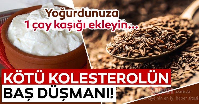 Mucize baharat kötü kolesterolün baş düşmanı çıktı! Yoğurtla tüketilince faydası katlanan muhteşem baharat!