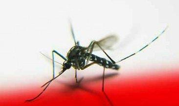 Sıtma neden olur, nasıl geçer? Sıtma belirtileri nelerdir?