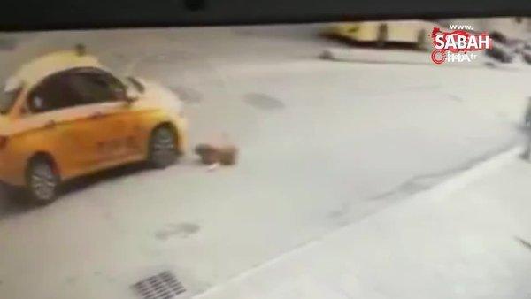 Pendik'te taksicinin köpeğe çarpıp kaçması kamerada | Video