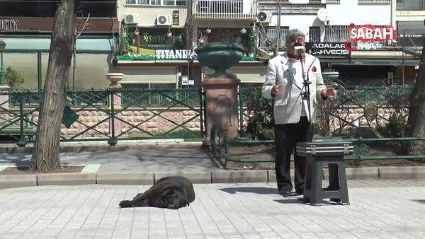 Eskişehir'de sokak müzisyenin yanından bir an olsun ayrılmayan köpek gülümsetti