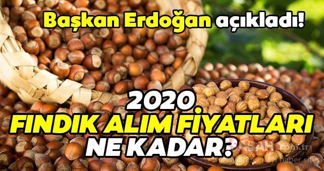 Fındık alım fiyatı 2020: Fındık alım fiyatları ne kadar? Başkan Erdoğan son dakika açıkladı!