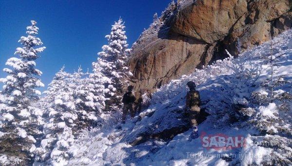 Jandarmadan PKK'nın kış üstlenmesine ağır darbe