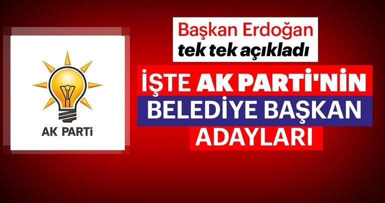Son dakika: Cumhurbaşkanı Erdoğan AK Parti Belediye Başkan Adaylarını açıkladı! - Ak Parti 2019 Belediye Başkan adayları
