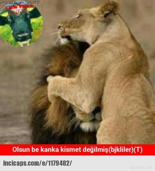 Beşiktaş yenildi capsler patladı